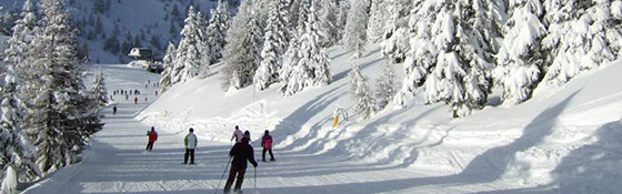School skiing trip in Folgarida